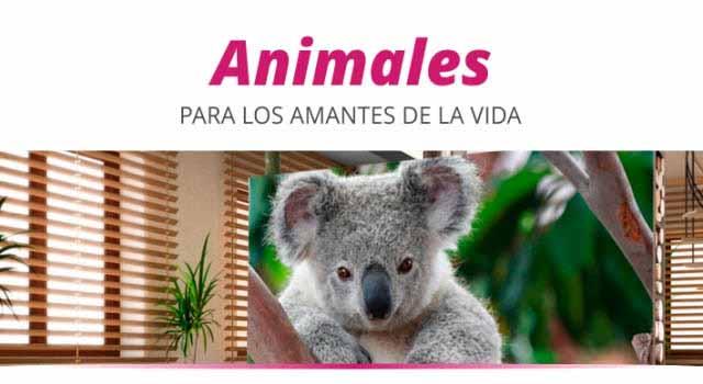 Fotomurales animales