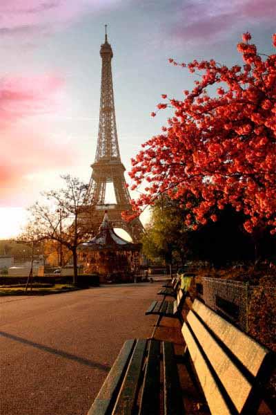 https://www.latiendadelaspegatinas.com/uploads/fotomurales-decorativos-ciudades-y-monumentos-FM-ciu-0006-paseo-hacia-la-torre-eiffel-BASE_185b9.jpg