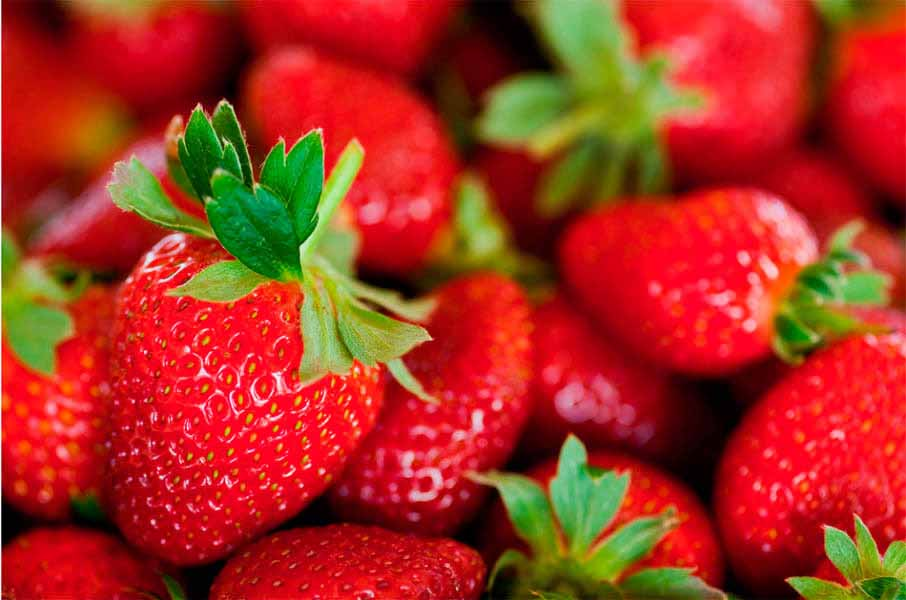 https://www.latiendadelaspegatinas.com/uploads/fotomurales-decorativos-comida-y-bebida-FM-com-0001-fresas-BASE_995b3.jpg