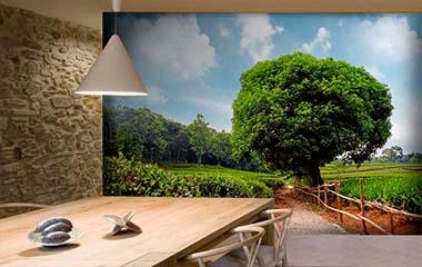 Fotomural Plantación de té