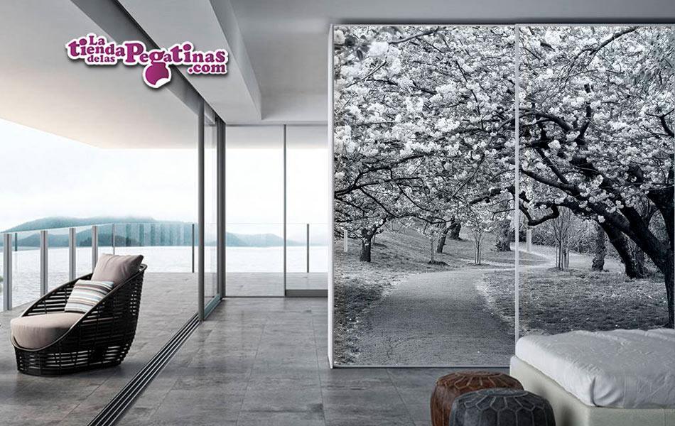Fotomural Paseo entre cerezos