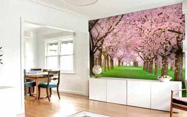 Fotomural Cerezos en flor